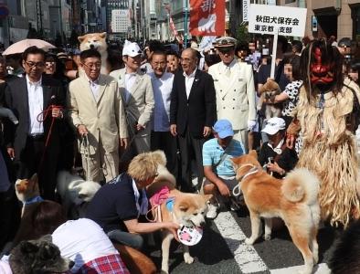 秋田県・大館秋田犬&男鹿なまはげフェアが開催されました!