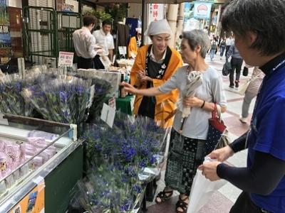 千葉県柏市にて「由利本荘まるごとフェア」開催します。