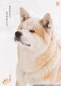 2015年にありがとう!(北海道・東北ブロック交流推進員より)