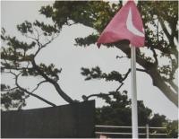 沖縄、千秋の塔・追悼式