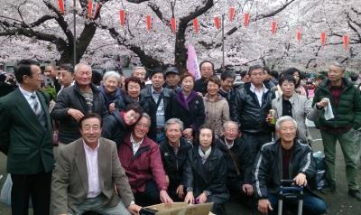仙北市ふるさと会連絡協議会のお花見がテレビ取材されました!